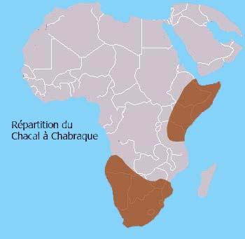 Répartition géographique du Chacal à Chabraque