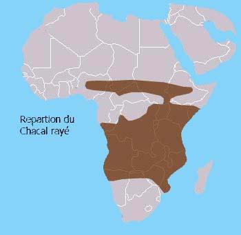 Répartition géographique du Chacal rayé