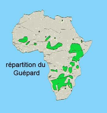 repartition du guepard en Afrique