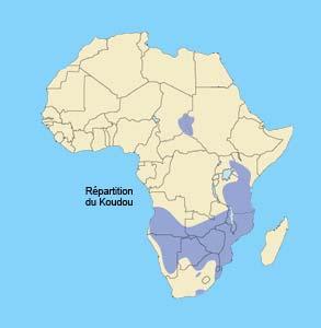 repartition du koudou en Afrique