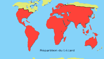 repartition du lézard