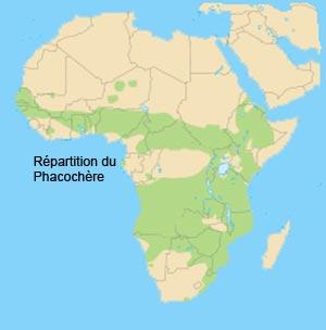 repartition du phacochere en Afrique