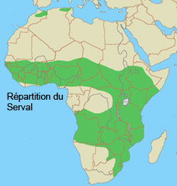 repartition geographique du serval