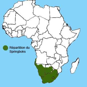 repartition du springbok en Afrique
